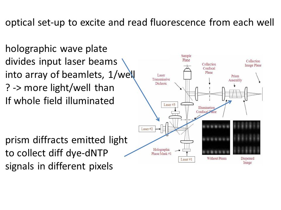 optical set-up to excite and read fluorescence from each well