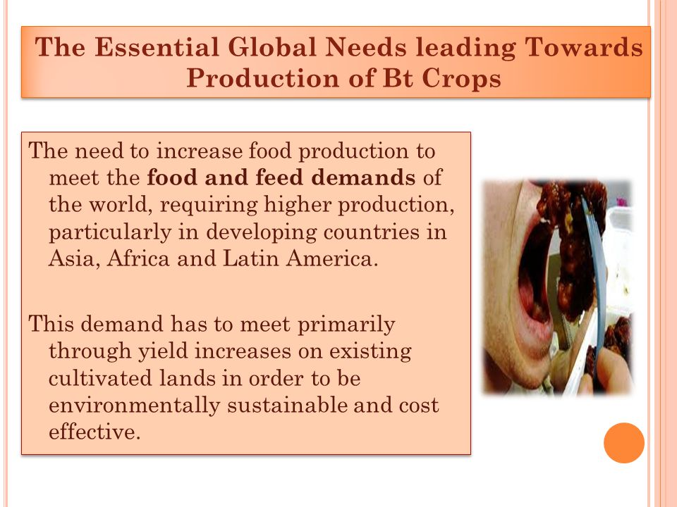 The Essential Global Needs leading Towards Production of Bt Crops