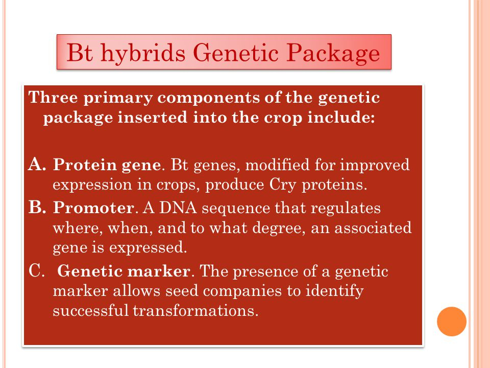 Bt hybrids Genetic Package