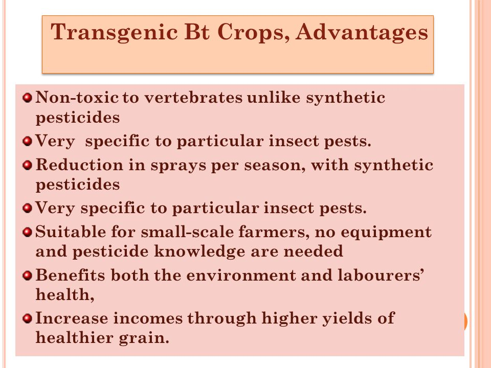 Transgenic Bt Crops, Advantages