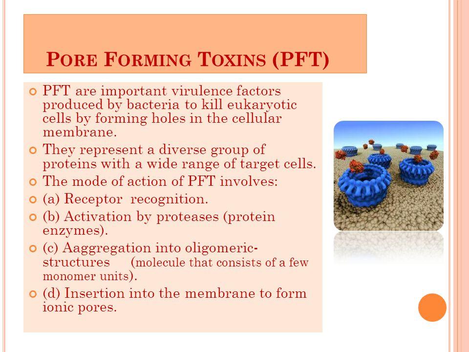 Pore Forming Toxins (PFT)