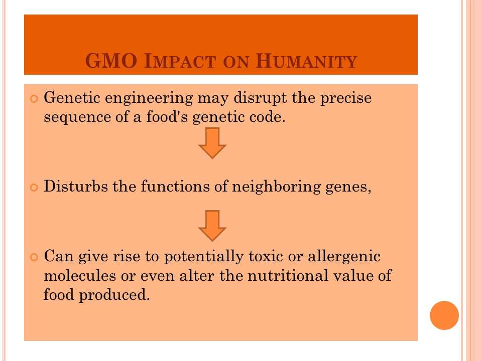 GMO Impact on Humanity Genetic engineering may disrupt the precise sequence of a food s genetic code.