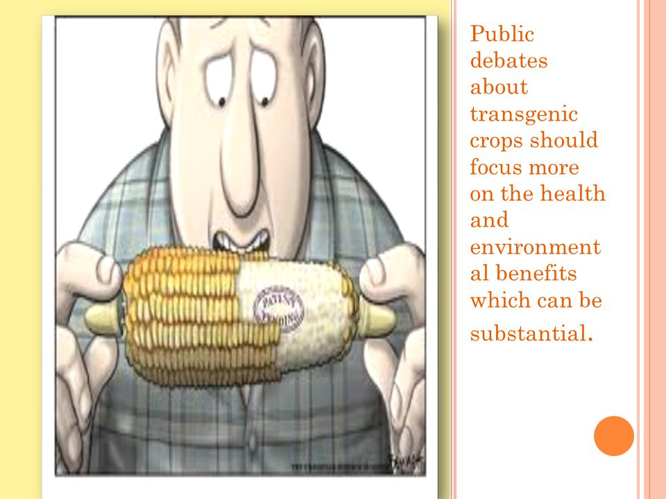 Public debates about transgenic crops should focus more on the health and environment al benefits which can be substantial.