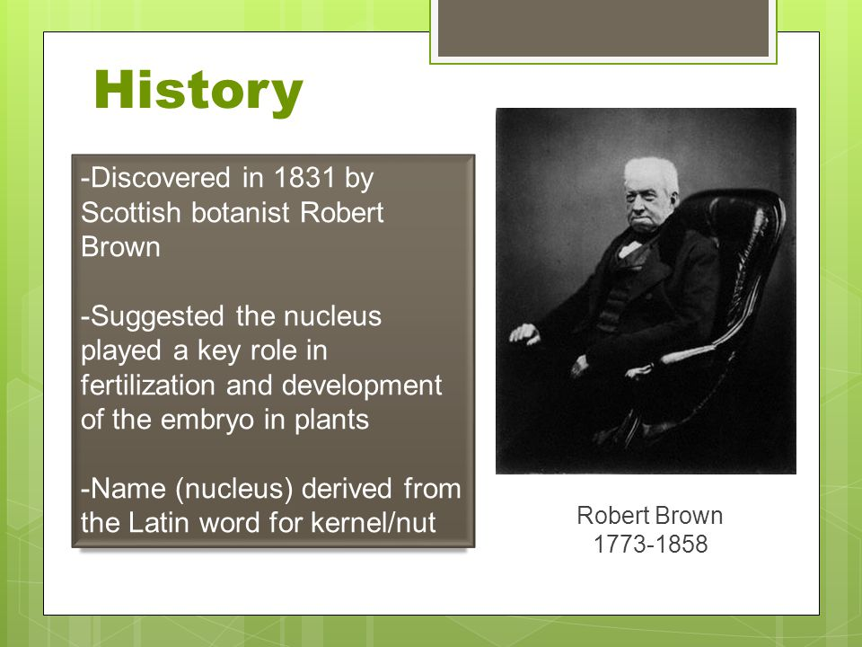 History -Discovered in 1831 by Scottish botanist Robert Brown