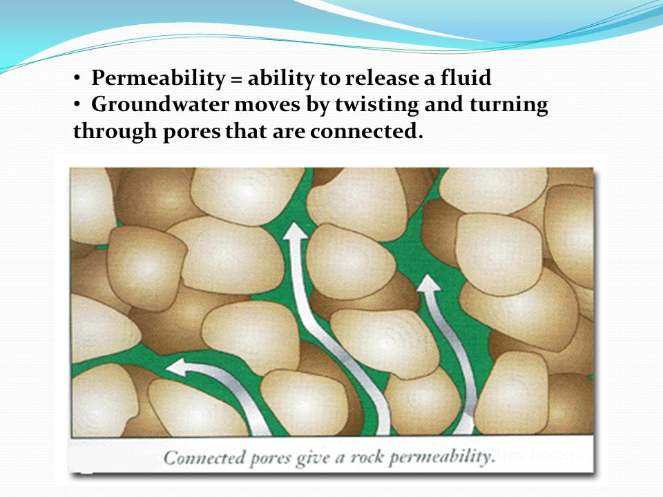 Permeability = ability to release a fluid