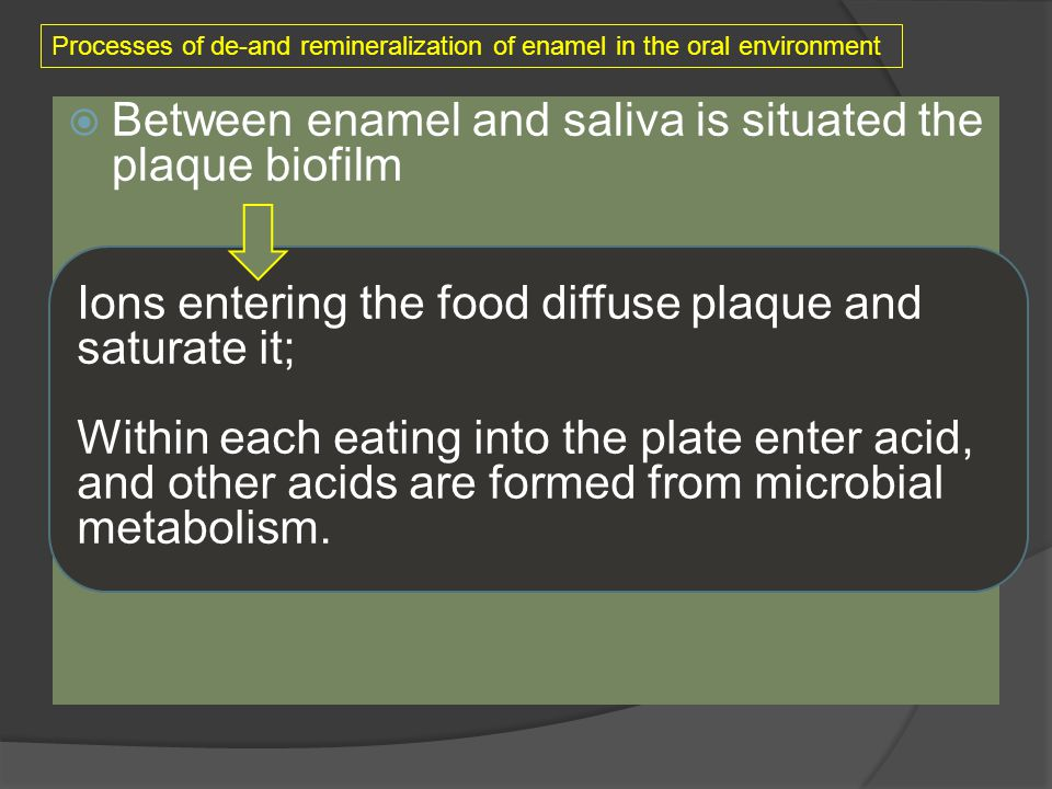 Between enamel and saliva is situated the plaque biofilm