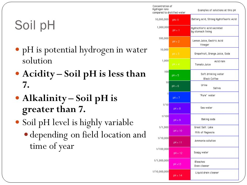 Soil pH pH is potential hydrogen in water solution