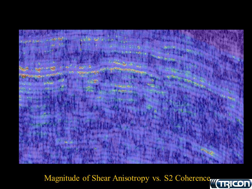 Magnitude of Shear Anisotropy vs. S2 Coherence