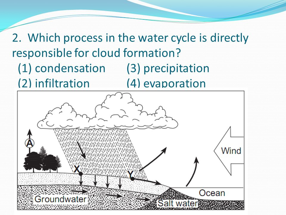 2. Which process in the water cycle is directly responsible for cloud formation.