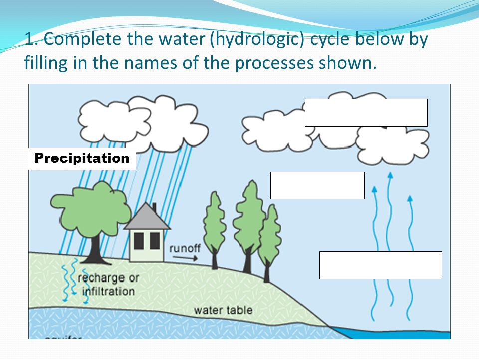 1. Complete the water (hydrologic) cycle below by filling in the names of the processes shown.