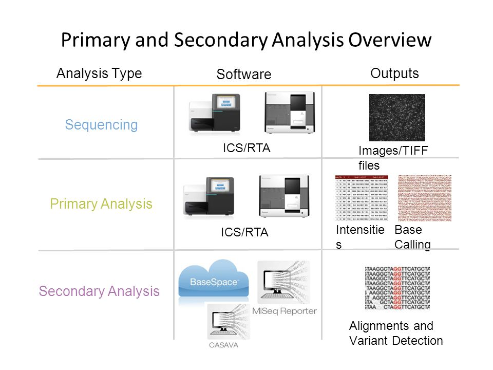 Primary and Secondary Analysis Overview