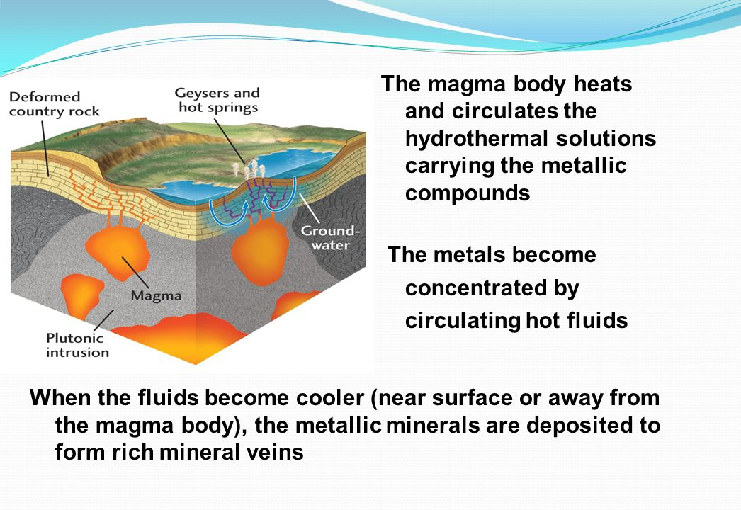 The magma body heats and circulates the hydrothermal solutions carrying the metallic compounds