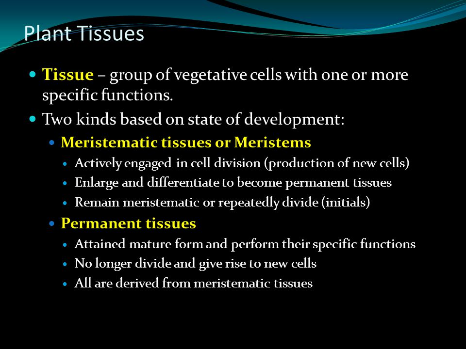 Plant Tissues Tissue – group of vegetative cells with one or more specific functions. Two kinds based on state of development: