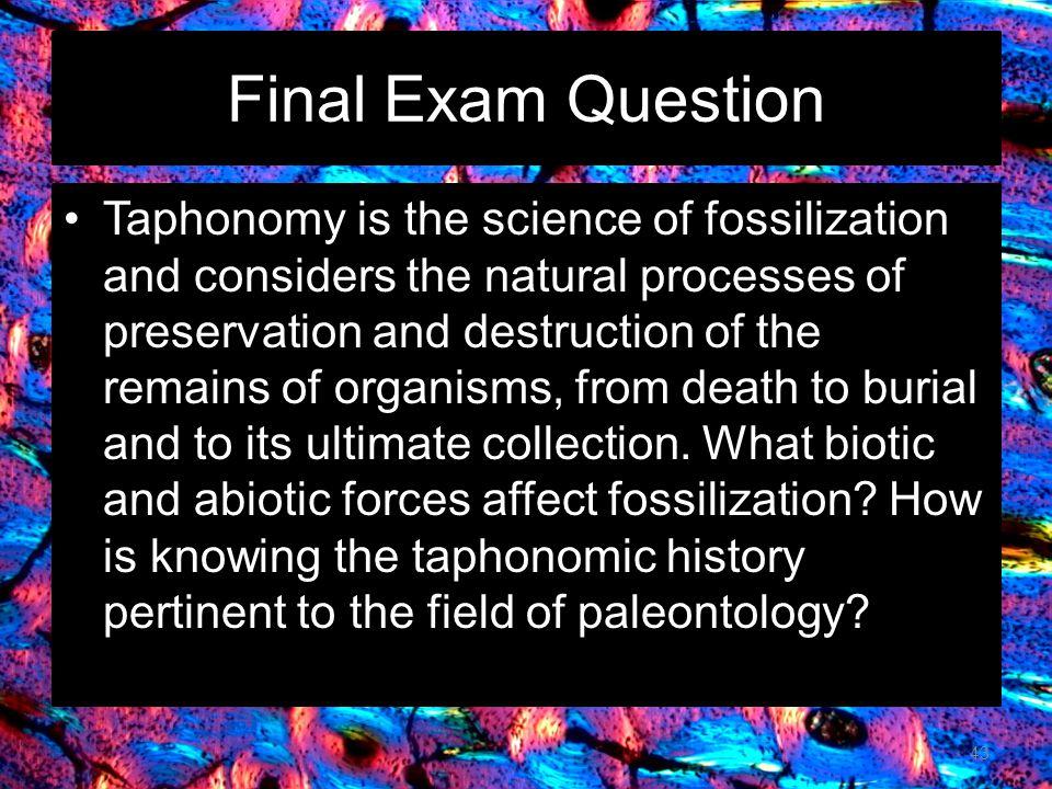 Final Exam Question