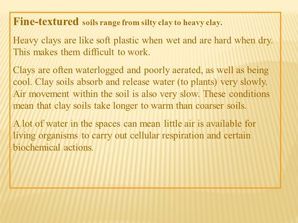 Fine-textured soils range from silty clay to heavy clay.