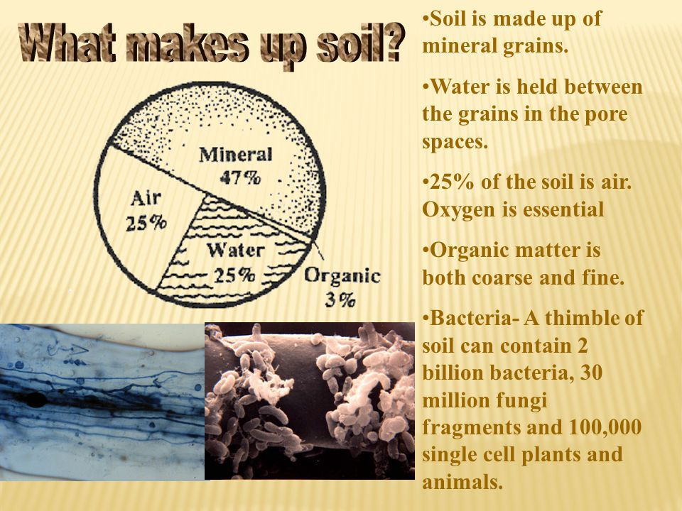 What makes up soil Soil is made up of mineral grains.