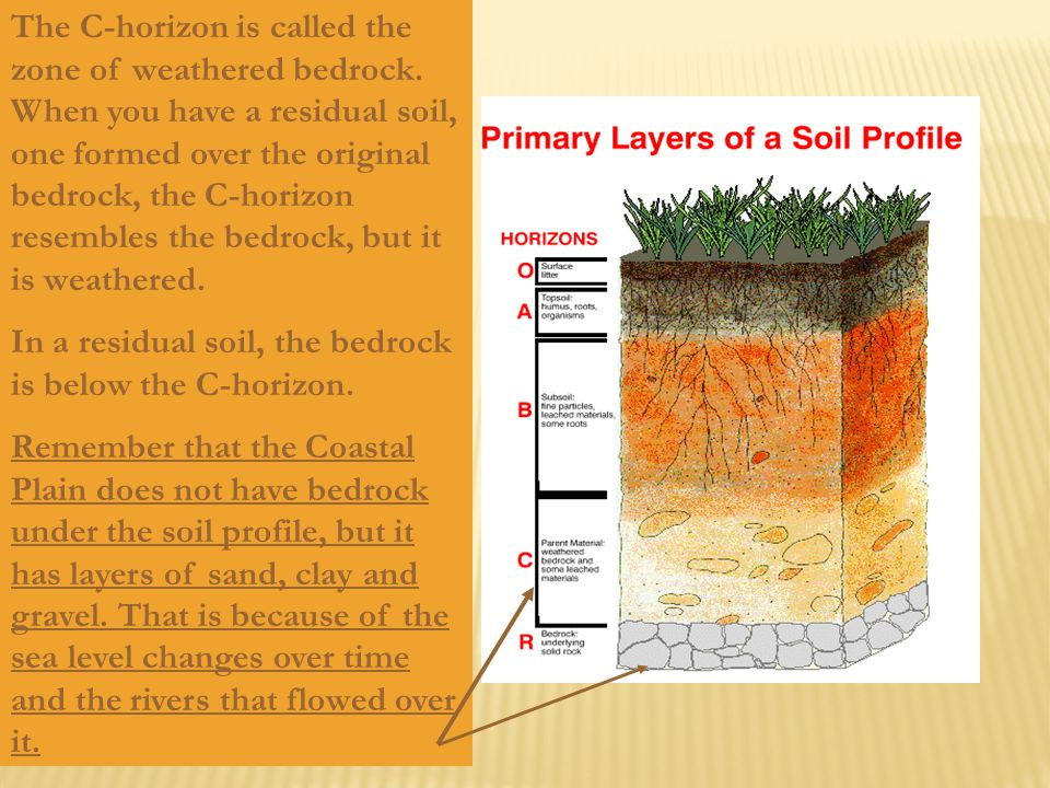 The C-horizon is called the zone of weathered bedrock