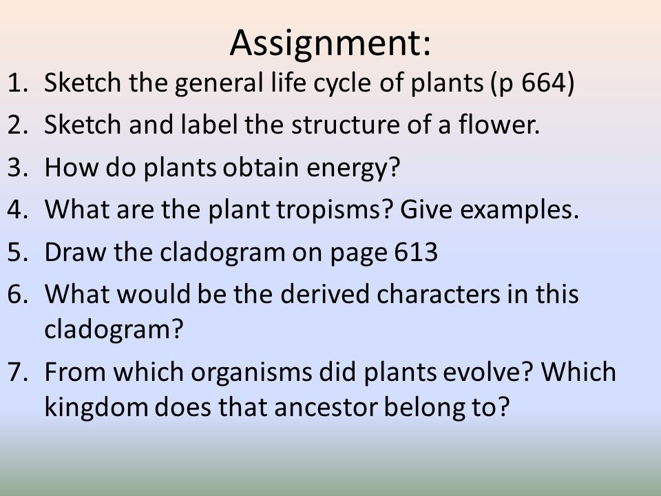 Assignment: Sketch the general life cycle of plants (p 664)