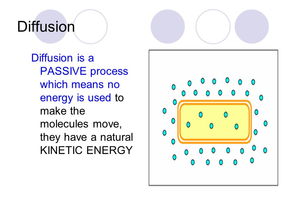 Diffusion Diffusion is a PASSIVE process which means no energy is used to make the molecules move, they have a natural KINETIC ENERGY.