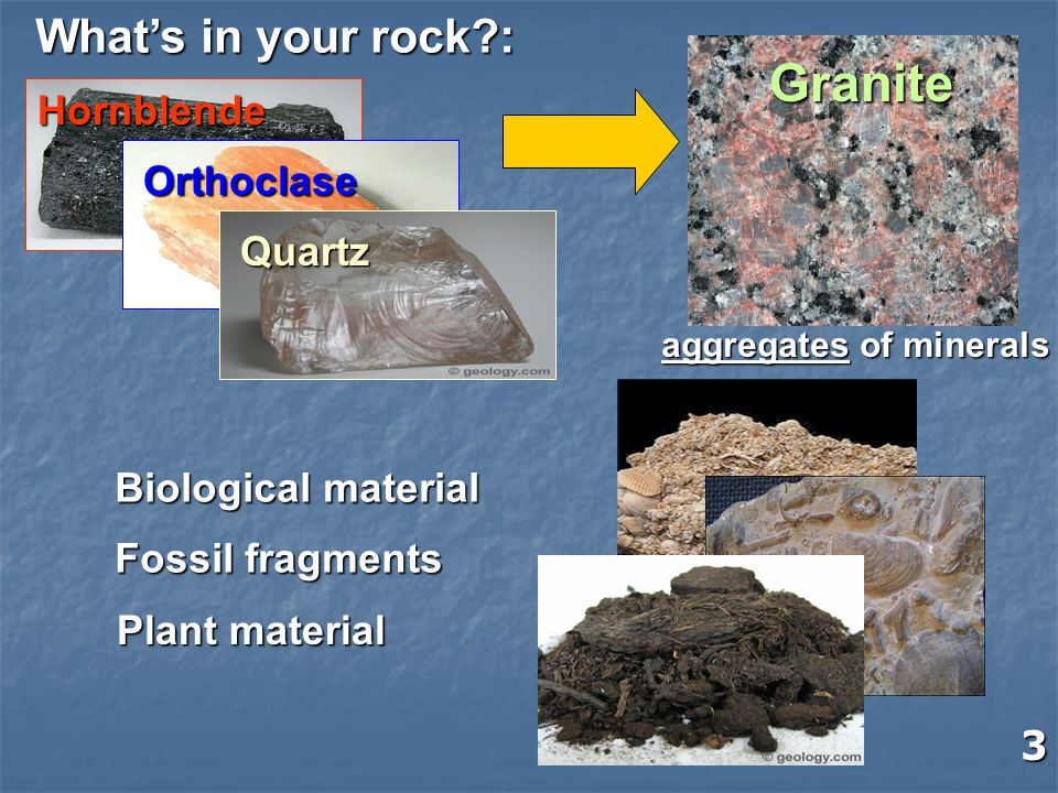 Granite What's in your rock : Hornblende Orthoclase Quartz