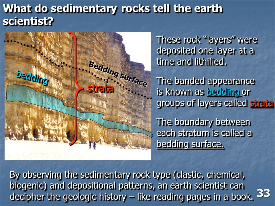 What do sedimentary rocks tell the earth scientist