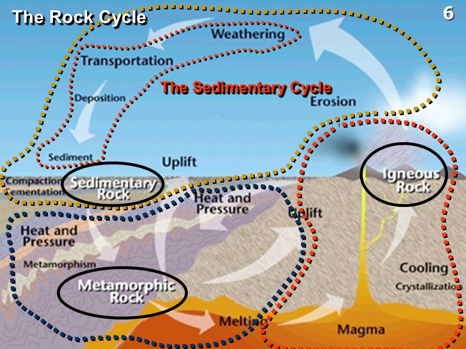 6 The Rock Cycle The Sedimentary Cycle