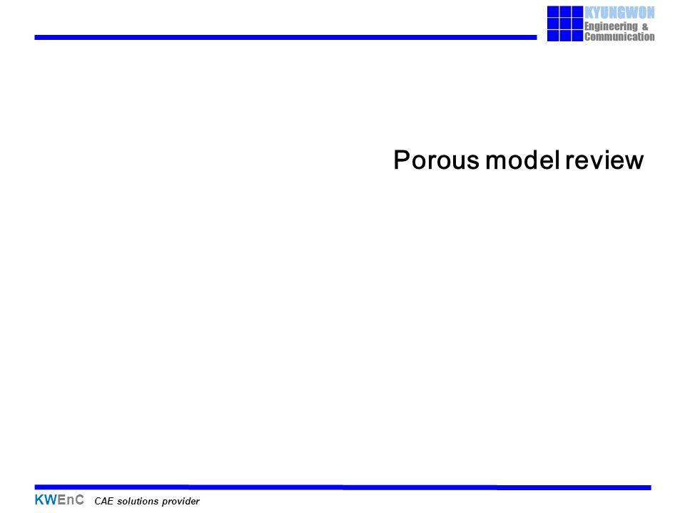 Porous model review