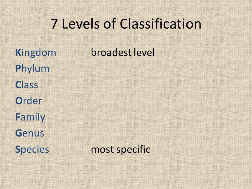 7 Levels of Classification