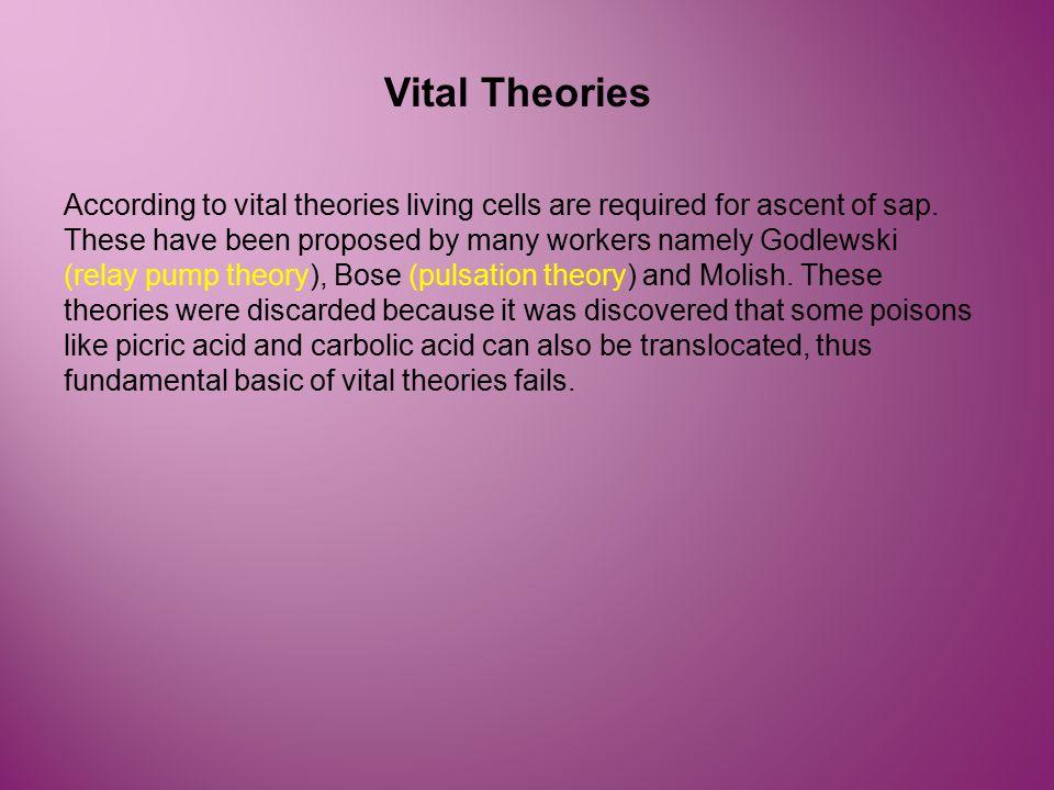 Vital Theories