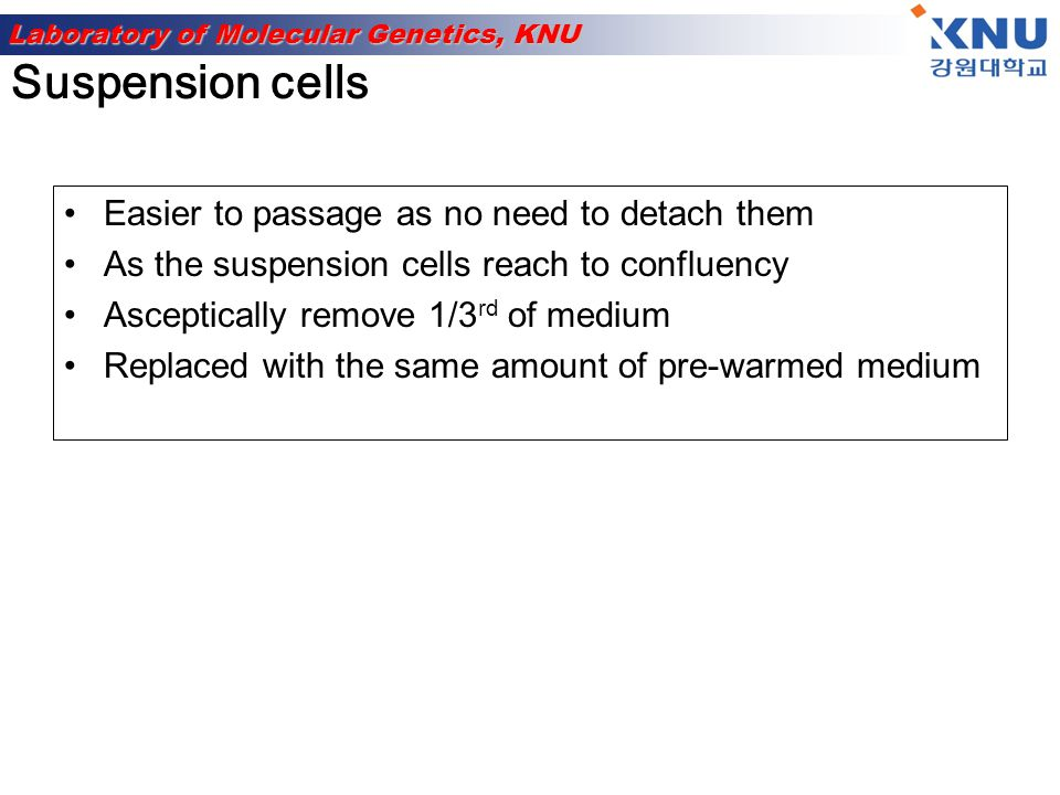 Suspension cells Easier to passage as no need to detach them