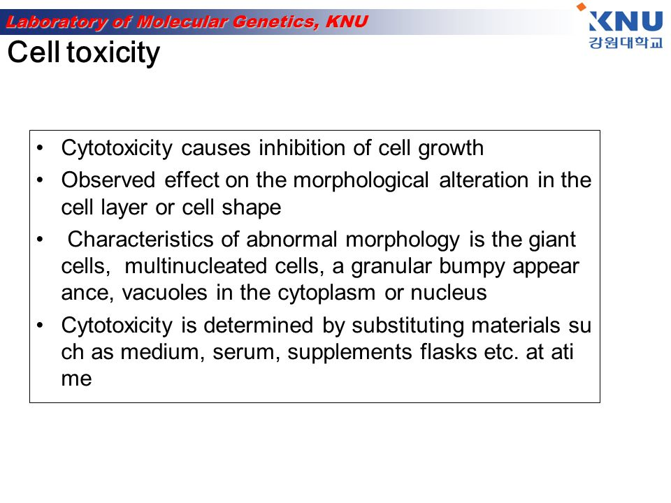 Cell toxicity Cytotoxicity causes inhibition of cell growth