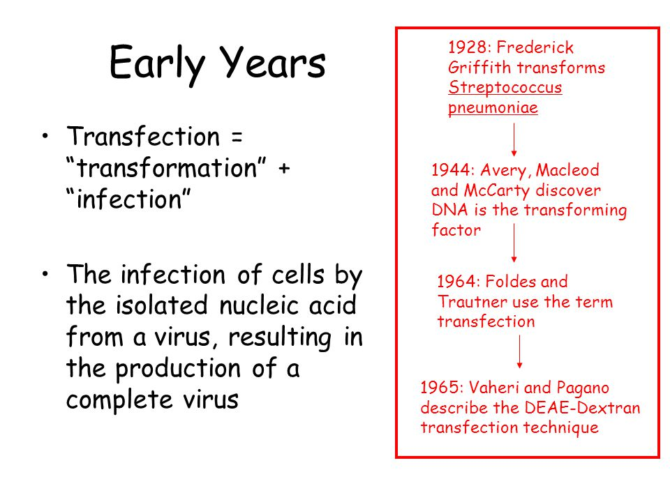 Early Years Transfection = transformation + infection