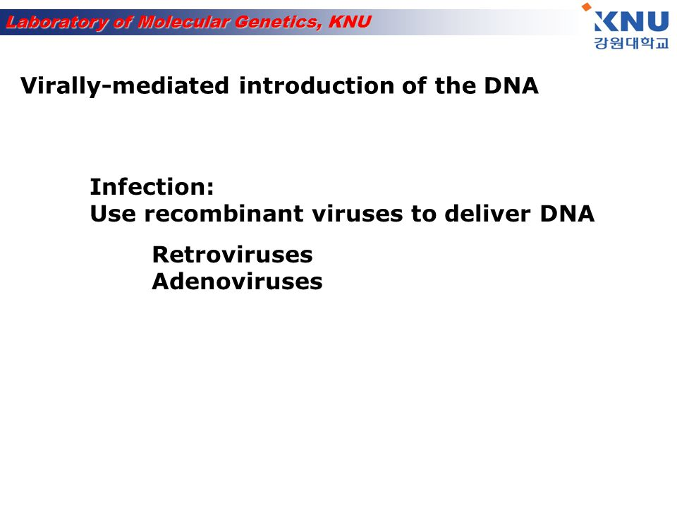 Virally-mediated introduction of the DNA