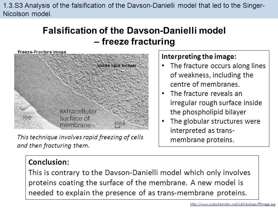 Falsification of the Davson-Danielli model