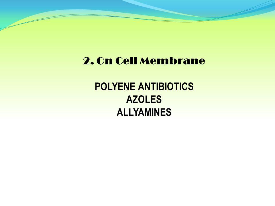 2. On Cell Membrane POLYENE ANTIBIOTICS AZOLES ALLYAMINES
