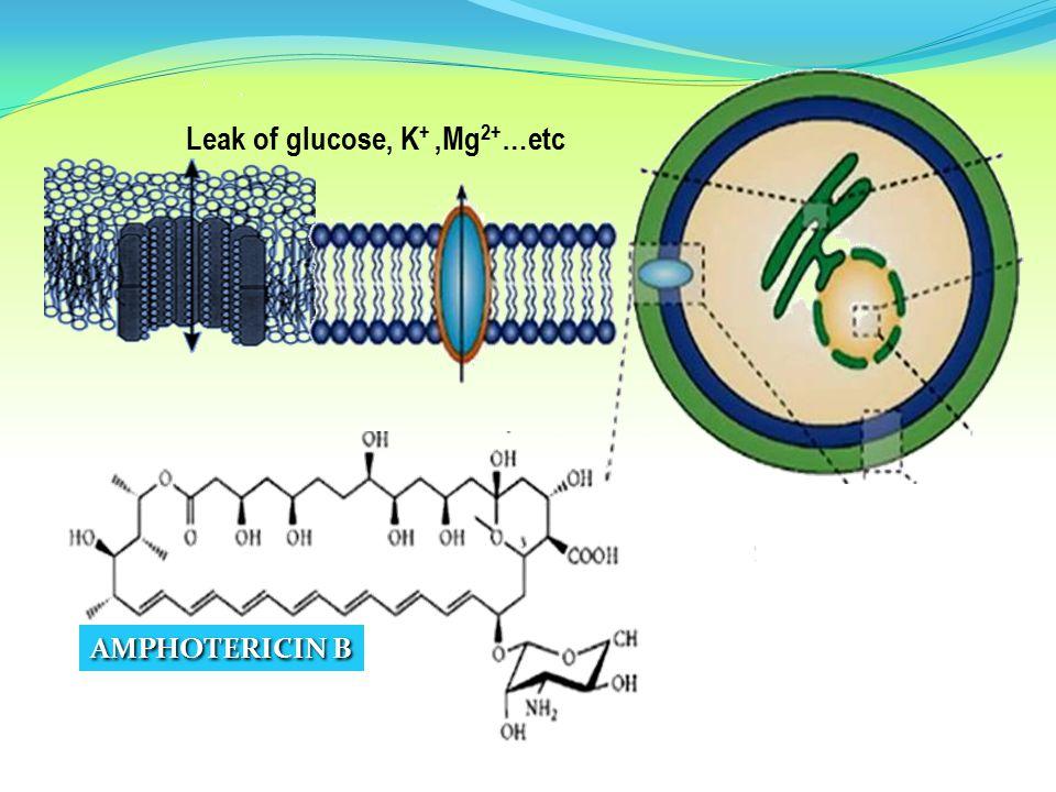 Leak of glucose, K+ ,Mg2+…etc