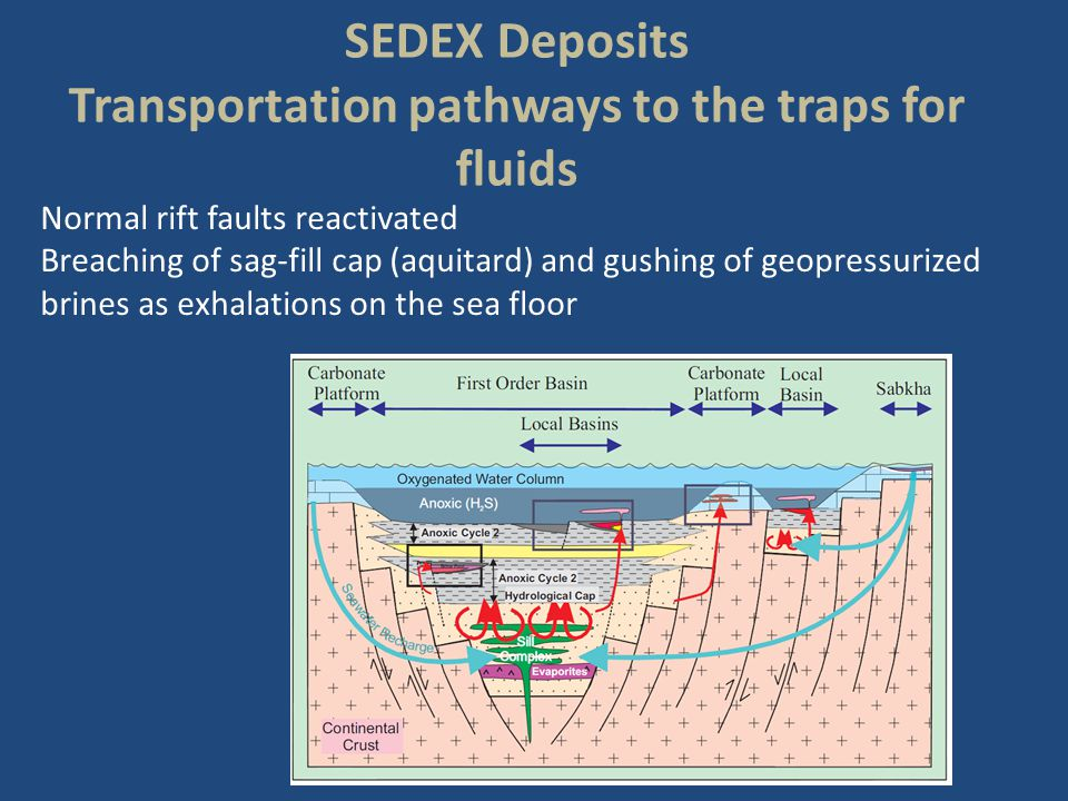 Transportation pathways to the traps for fluids