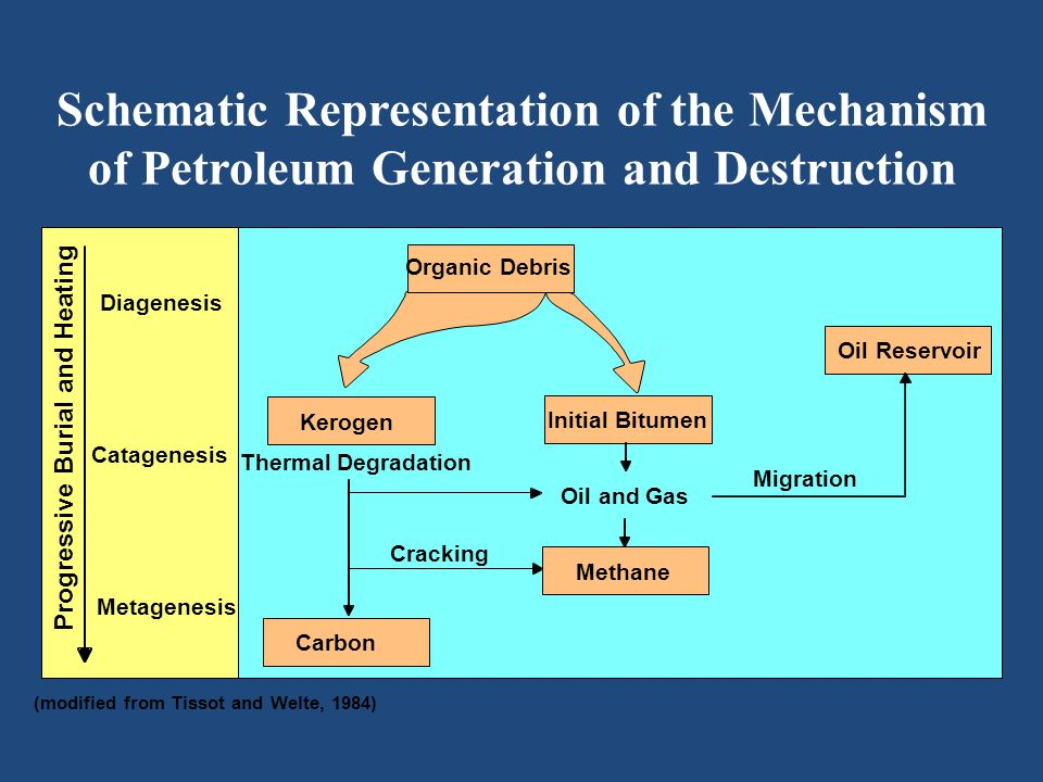 Geology of Petroleum Systems 68