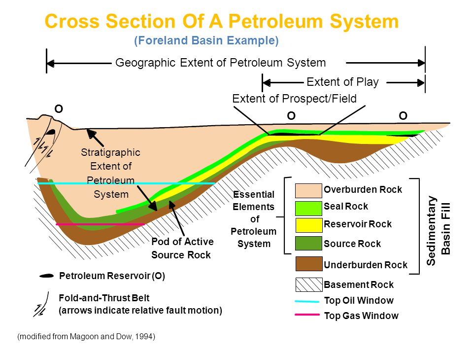 Cross Section Of A Petroleum System