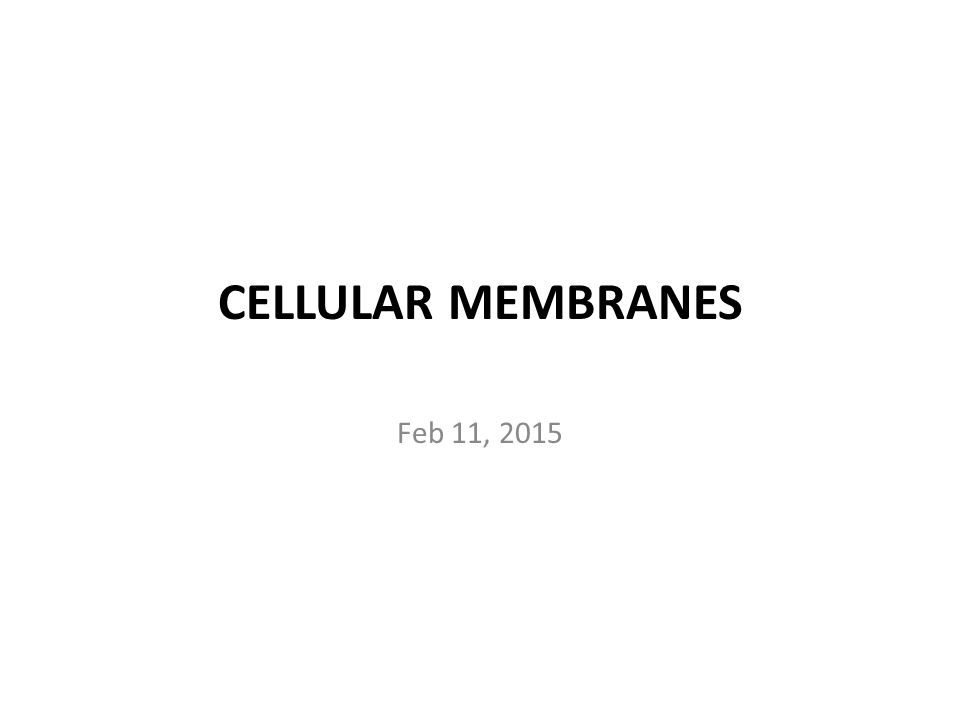 CELLULAR MEMBRANES Feb 11, 2015
