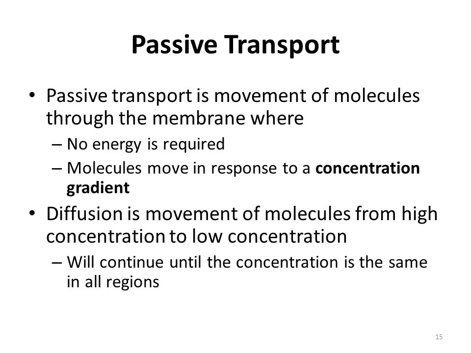 Passive Transport Passive transport is movement of molecules through the membrane where. No energy is required.