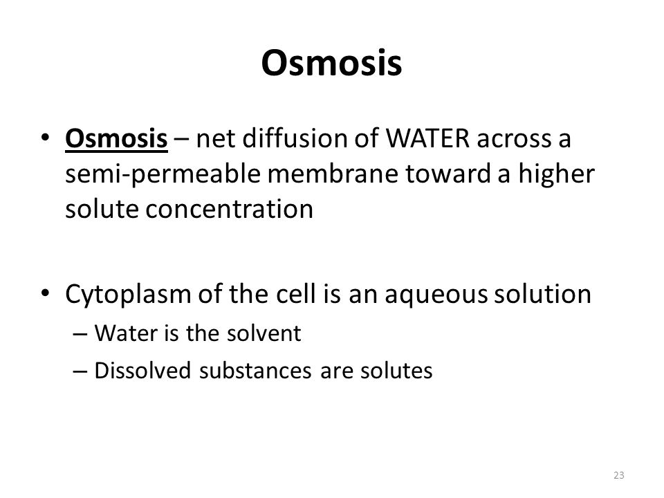 Osmosis Osmosis – net diffusion of WATER across a semi-permeable membrane toward a higher solute concentration.
