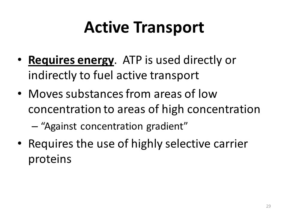 Active Transport Requires energy. ATP is used directly or indirectly to fuel active transport.
