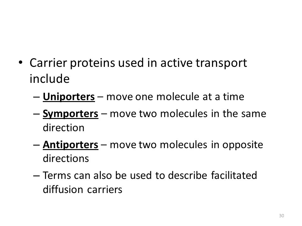 Carrier proteins used in active transport include