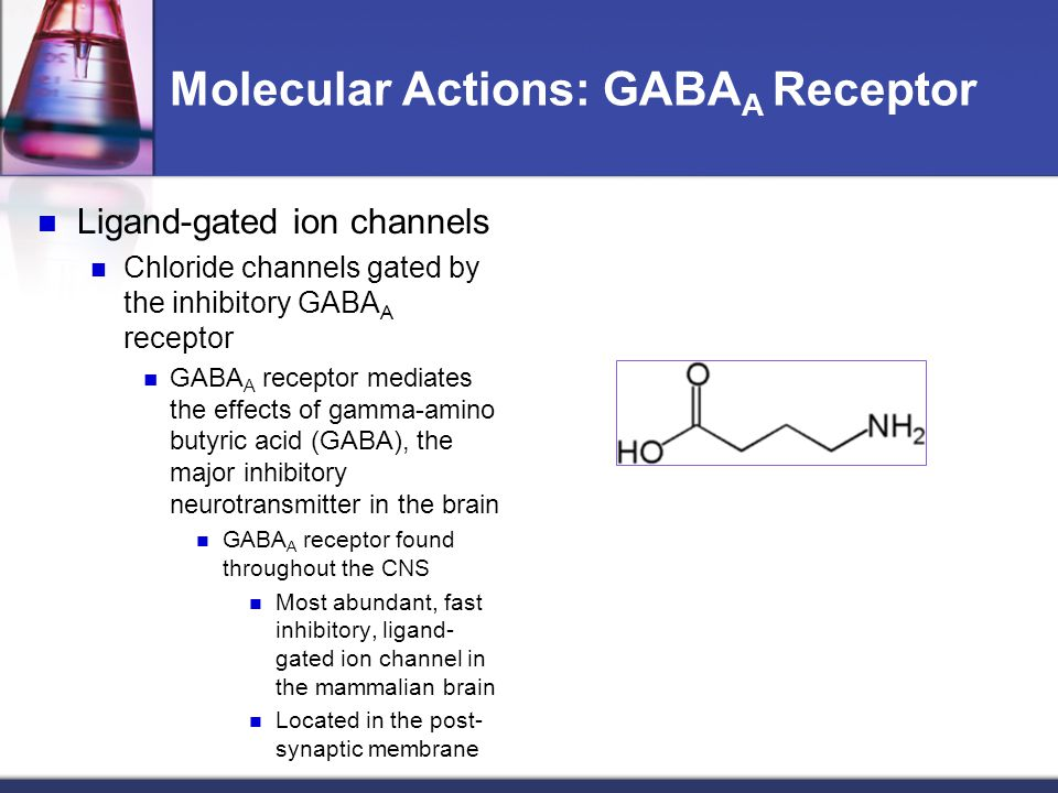 Molecular Actions: GABAA Receptor
