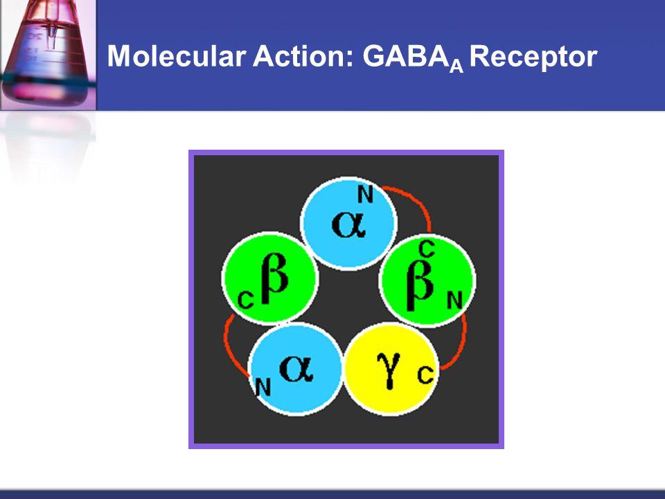 Molecular Action: GABAA Receptor