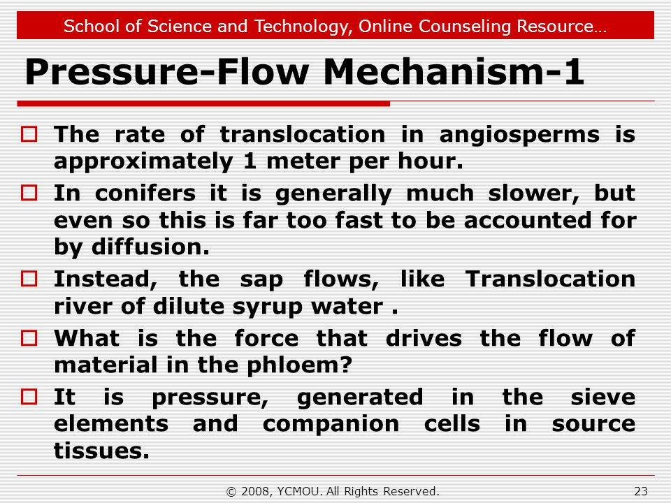 Pressure-Flow Mechanism-1