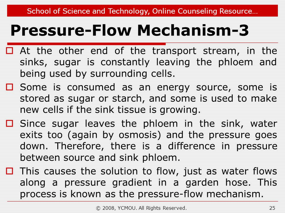 Pressure-Flow Mechanism-3