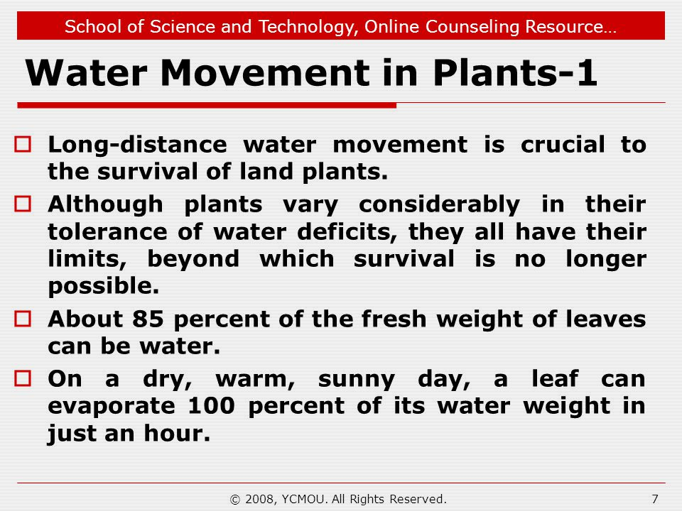 Water Movement in Plants-1