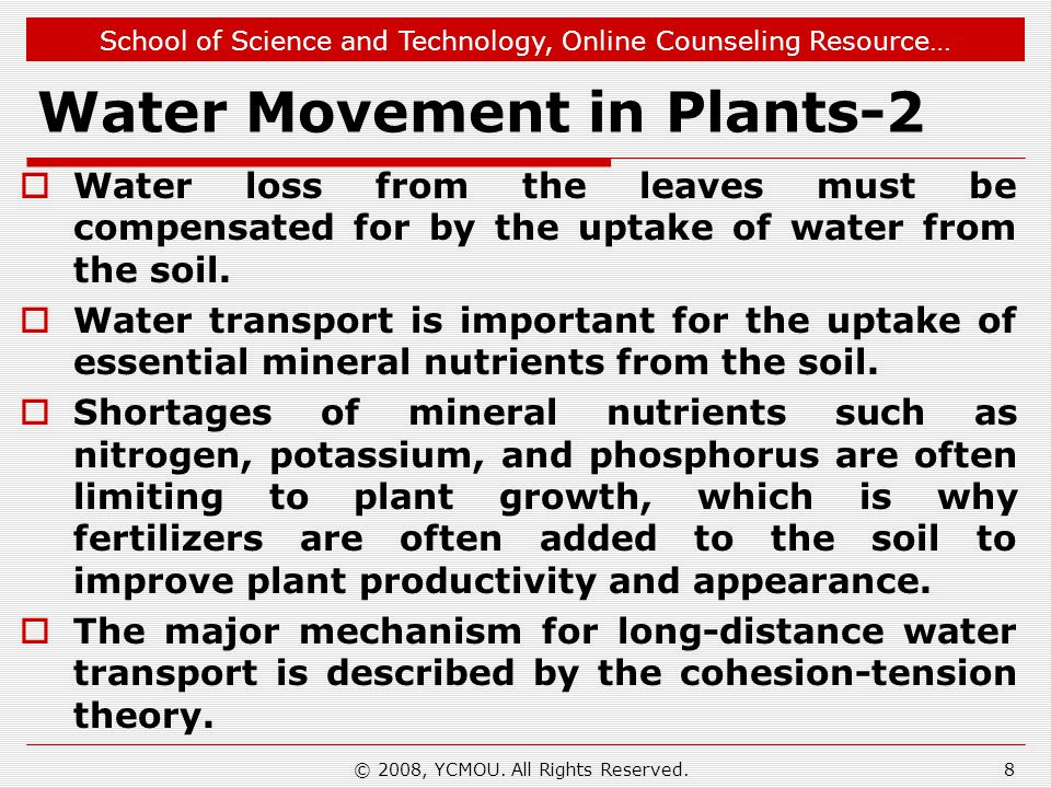 Water Movement in Plants-2